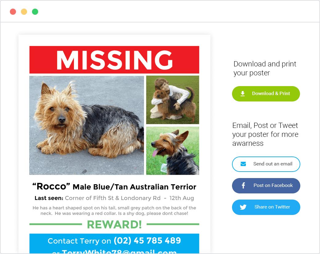 11 Format Missing Pet Flyer Template for Missing Pet Flyer Template