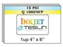 Teslin Id Card Template
