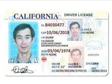 15 Printable Drivers License Id Card Template in Photoshop for Drivers License Id Card Template
