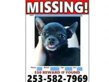 16 Standard Lost Pet Flyer Template Free Maker for Lost Pet Flyer Template Free