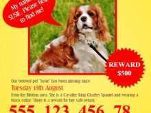 27 Creating Missing Pet Flyer Template Layouts for Missing Pet Flyer Template