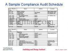 28 Free Audit Plan Schedule Template Photo for Audit Plan Schedule Template