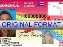 29 Creating Hawaii Id Card Template by Hawaii Id Card Template
