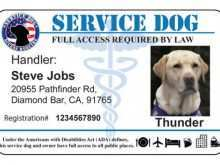 Service Dog Id Card Template from legaldbol.com