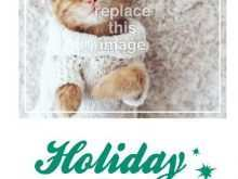 31 The Best Cat Christmas Card Template in Photoshop by Cat Christmas Card Template