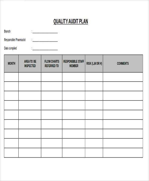 32 Printable Audit Plan Schedule Template PSD File for Audit Plan Schedule Template