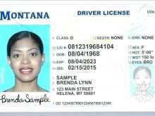 Drivers License Id Card Template
