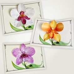 34 Free Orchid Pop Up Card Template Layouts with Orchid Pop Up Card Template