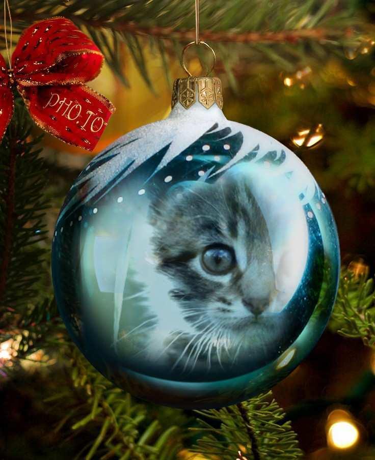 34 Standard Christmas Bauble Template For Christmas Card Layouts with Christmas Bauble Template For Christmas Card