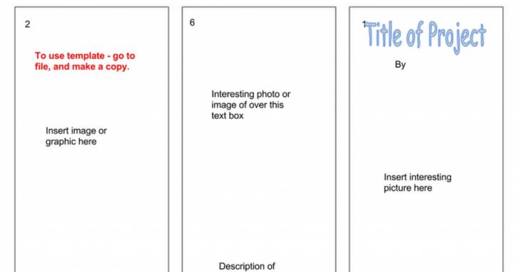Brochure Templates Google Docs from legaldbol.com