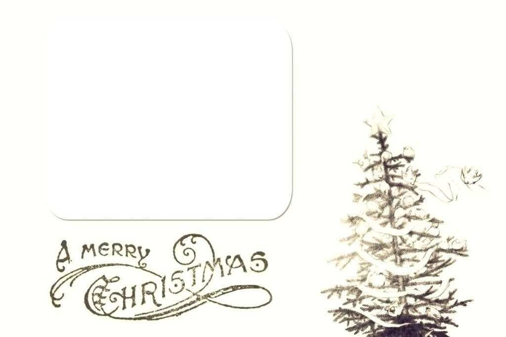 38 Printable Christmas Card Template Word 2010 Layouts for Christmas Card Template Word 2010