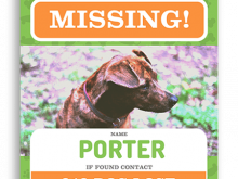 46 The Best Lost Pet Flyer Template Free in Photoshop for Lost Pet Flyer Template Free