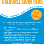 Swim Team Flyer Templates