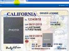 52 Best Blank Id Card Template Photoshop PSD File for Blank Id Card Template Photoshop