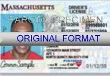 56 Printable Drivers License Id Card Template for Ms Word by Drivers License Id Card Template
