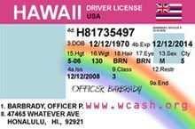 57 Free Hawaii Id Card Template Photo with Hawaii Id Card Template