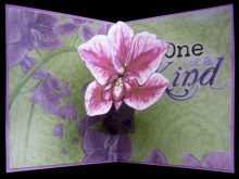 60 Printable Orchid Pop Up Card Template Formating for Orchid Pop Up Card Template