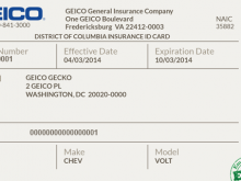 65 Creating Insurance Card Template Online Free in Word for Insurance Card Template Online Free