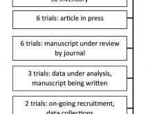 75 Printable Audit Plan Template For Clinical Trials Photo by Audit Plan Template For Clinical Trials