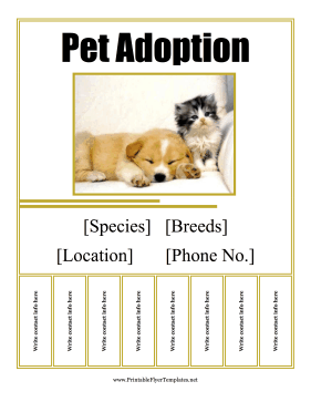 79 Best Adoption Flyer Template in Word by Adoption Flyer Template