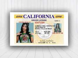 82 Creating American Id Card Template Templates for American Id Card Template