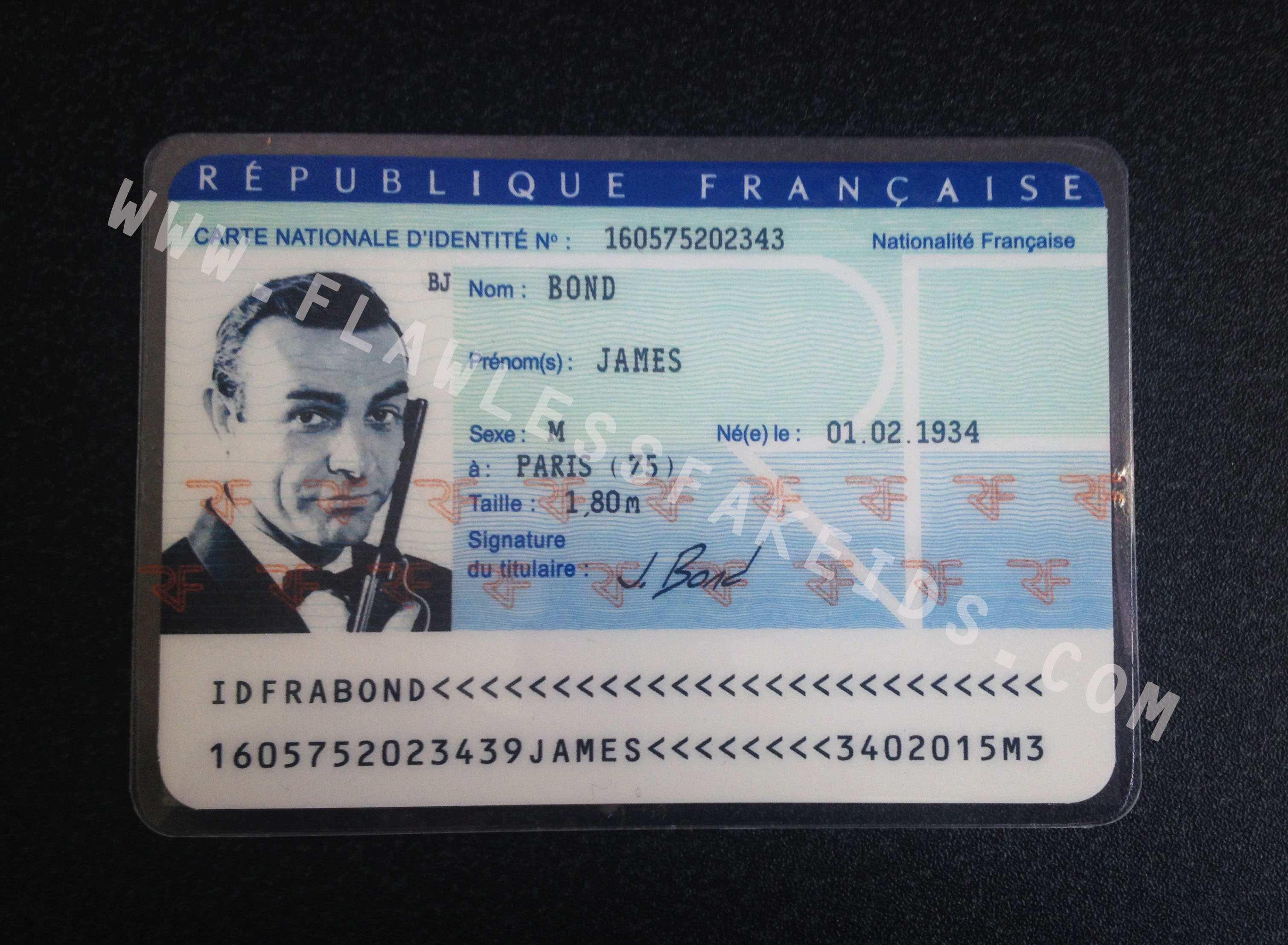 91 Free Printable Romanian Id Card Template Download with Romanian Id Card Template