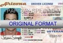 95 Creating Veteran Id Card Template Layouts by Veteran Id Card Template