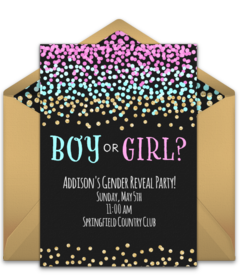 99 Customize Our Free Blank Gender Reveal Invitation Template PSD File for Blank Gender Reveal Invitation Template
